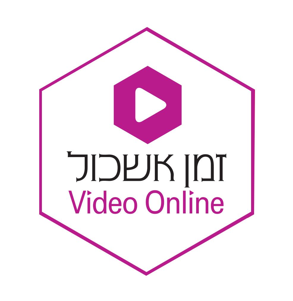הרצאות וידאו אונליין מטעם